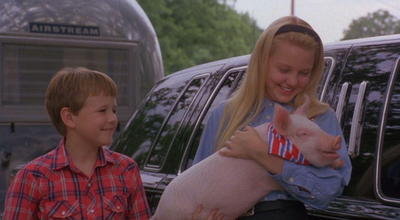 """Gordy"" (1995)"